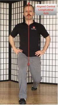 Straight lunge with central longitudinal axis